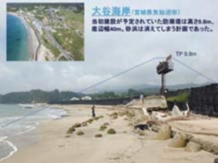 大谷海岸の防潮堤に関する住民参加の署名活動と震災復興計画の作成