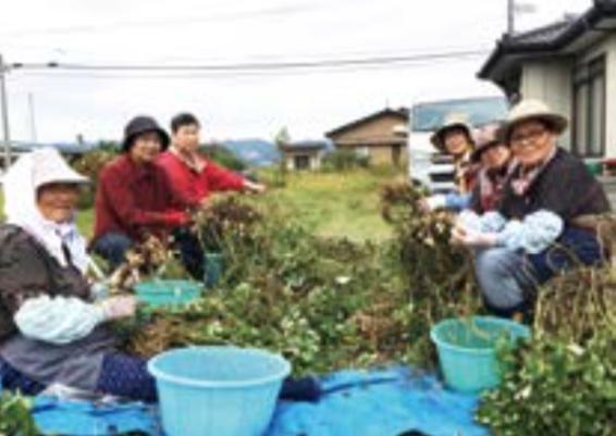 「健康農業」事業の引き継ぎ